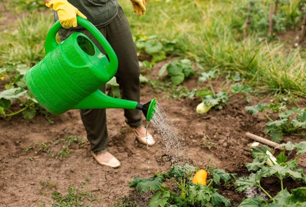 que faire au jardin en juin