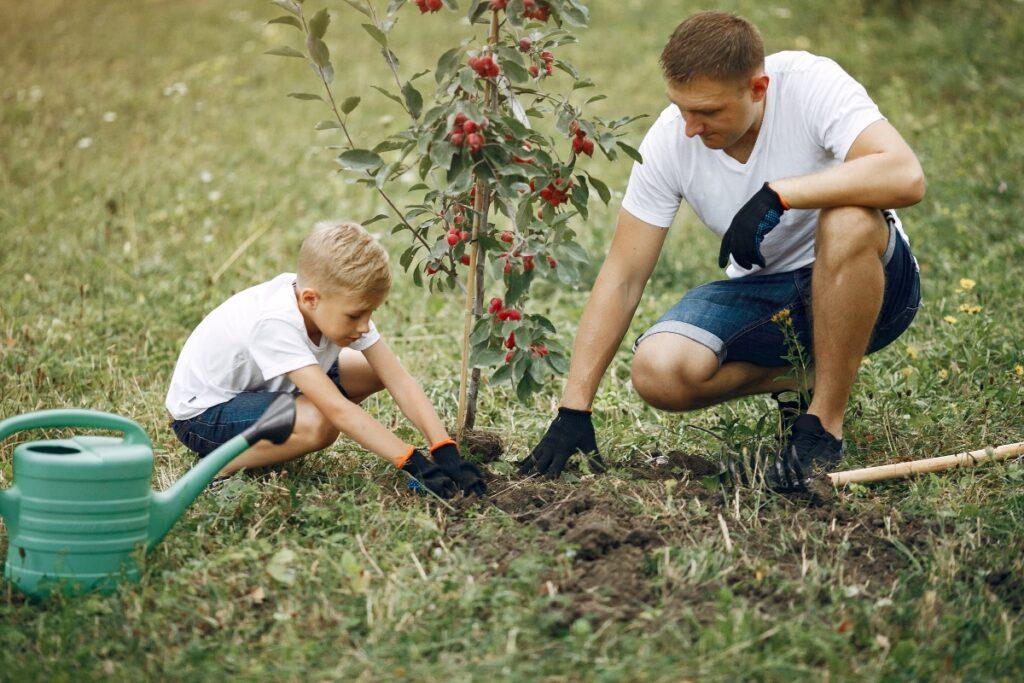 papa jardinage